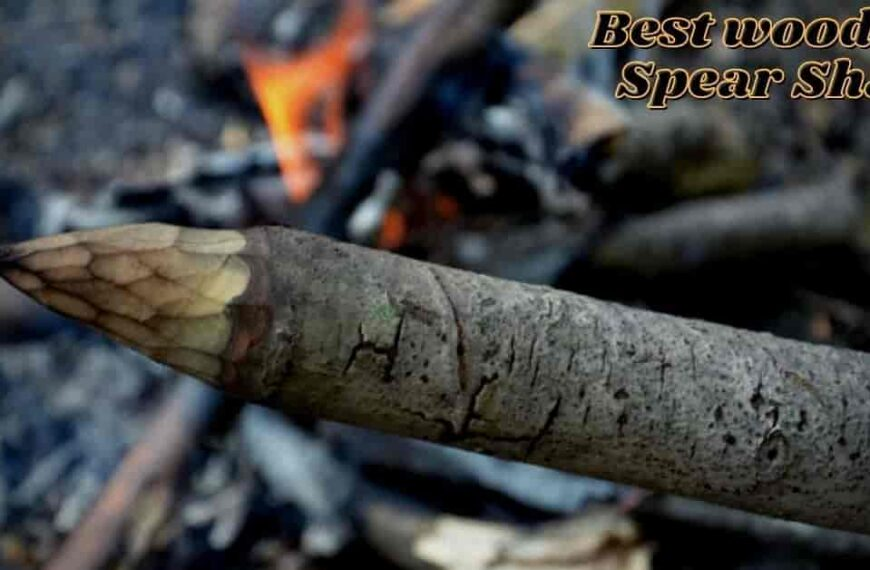 Picking The Best Wood for Spear Shaft in 2021