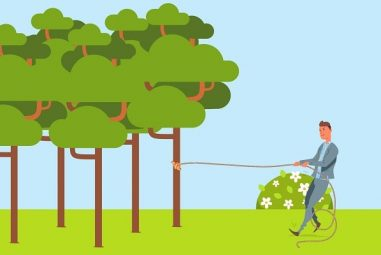 7 Best Rope for Pulling Trees (Aug. 2020) – Reviews & Buying Guide