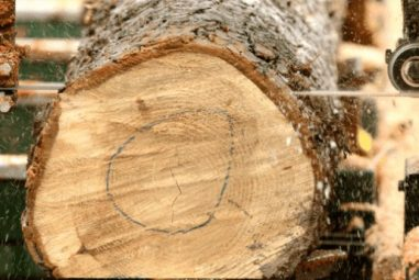 How to Saw Lumber with a Bandsaw Mill (7 Steps Solution)