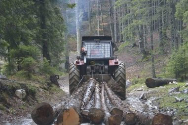 Skidding Logs with ATV and Tractors [The 360-Guide]